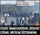 immigration problems, ethnic crime, Muslim extremism